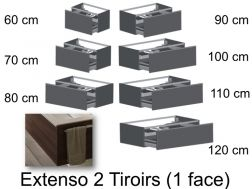 Bathroom cabinet, under basin or under plan, 2 drawers, a large facade - EXTENSO 2T1F